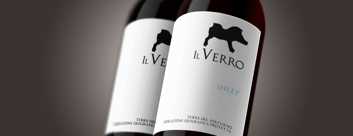 We talked about … The Wine: Sheep 2012