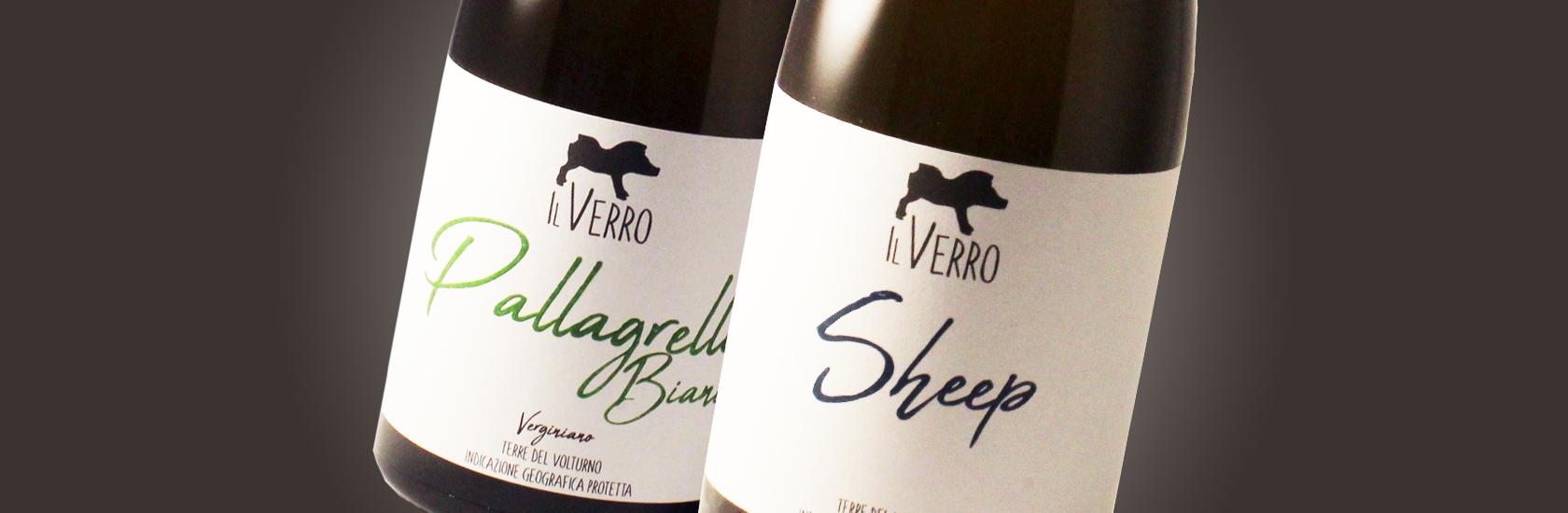 Il Verro Azienda Agricola. Vini bianchi Bio. Slide.